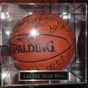 BasketBallLakersCase