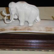Ivory15a