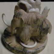 Ivory43a